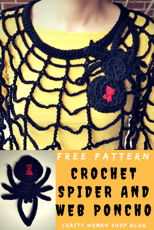 Spider and Web Pin